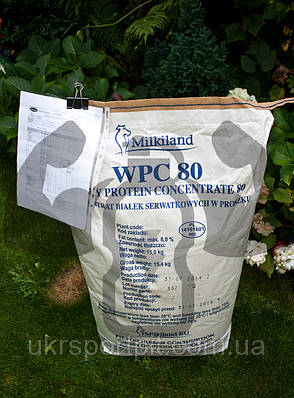 WPC 80 Milkiland Ostrowia Концентрат Сывороточного Белка 80 Голландия-Польша мешок 15кг