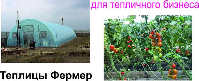 теплицы фермерские Днепродзержинск