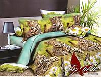 Постельное белье евро Поликоттон 3D  Леопард №3