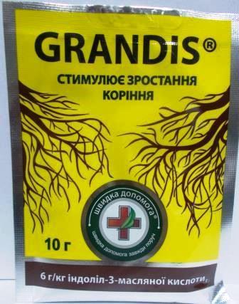 Добриво Грандіс (Grandis) 10г (Киссон)
