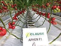 Семена томата Афен F1 \ Afen F1 250 семян Clause
