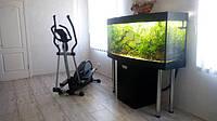 Оформление аквариумов