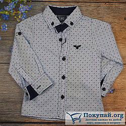 Рубашка длиный рукав для мальчика Размер: 9,10,11,12 лет (5841-2)