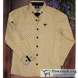 Рубашка с длиным рукавом для мальчика Размер: 9,10,11,12 лет (5841-3)