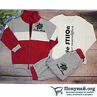 Турецкий спортивный костюм для ребенка Размеры: 2,3,4,5 лет (5865-3)
