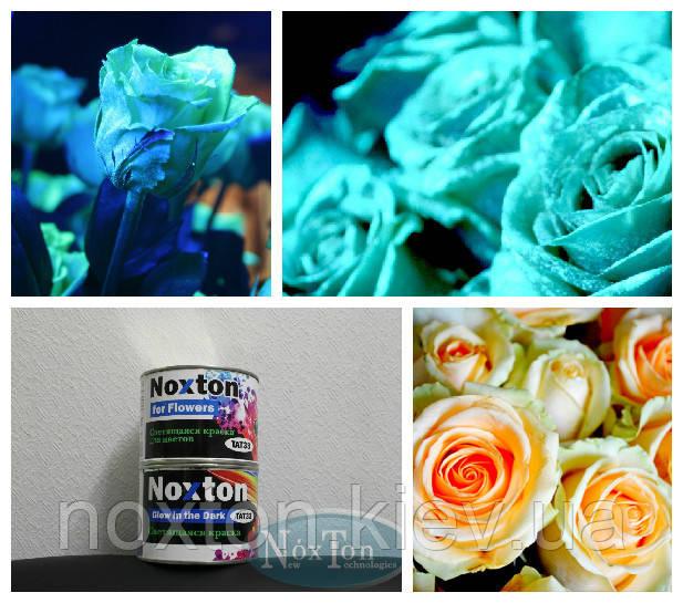 Как создать светящиеся цветы, бизнес идея для флористов