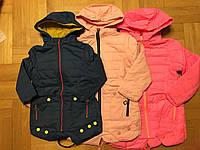 Куртка флисе на для девочек,оптом, Grace 116-146 см, № B70887