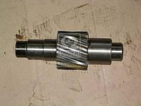 Шестерня ведущая цилиндрическая Z=13 (производство КамАЗ) (арт. 5320-2402110-10), AFHZX