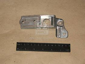 Петля двери ВАЗ 2111,12 задка левая (Производство ДААЗ) 21110-630601101, AAHZX