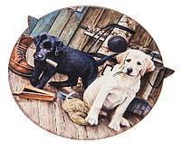 """Підставка під гаряче """"Puppies"""" (кераміка, 20 см.), фото 1"""