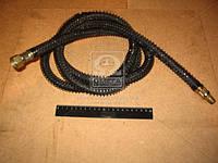 Шланг тормозной прицепа МАЗ L=2,45м (г-ш) (Производство Беларусь) 6422-3506380