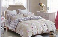 Комплект постельного белья полуторный, ранфорс 100% хлопок. Постільна білизна. (арт.8740)