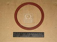 Сальник ступицы задней МАЗ красный 130х155 (производство Украина) (арт. 500А-3104038)