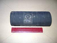 Патрубок радиатора МАЗ нижний (Производство Беларусь) 6422-1303025