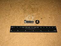Винт регулировочный клапана ГАЗ 53 с гайкой (производство ЗМЗ) (арт. 511.1007074)