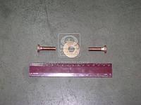 Ремкомплект реле втягивающего СТ 230 (арт. СТ230-3708800-РК), AAHZX