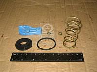 Рем комплект головки соеденительной ПАЛМ с фильтром (синий/желтый) (Производство ПААЗ) 11.3521509-20