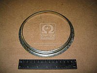 Маслоотражатель картера маховика ЯМЗ 236,238 (Производство Россия) 236-1002315