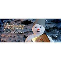"""Именное видеопоздравление от Деда Мороза Серия №5 """"Уроки волшебства"""" для одного/двоих детей"""