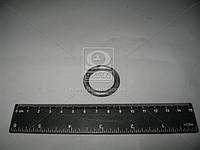 Кольцо уплотнительное втулок распорных ГАЗ 2410, 3110 (Производство ЯзРТИ) 24-2904072