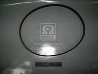 Ремень 6К-1125 компрессора ВАЗ 2110 (производство БРТ) (арт. 2110-8114096Р), ACHZX