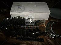 Вкладыши коренные Н2 А 41 АО20-1 (производство ЗПС, г.Тамбов) (арт. А23.01-116-41сб), AFHZX