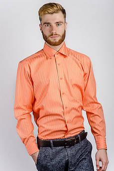 Рубашка мужская яркая Fra №871-16 (Апельсиновый)