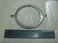 Шайба замковая (Производство МАЗ) 89501-3104079