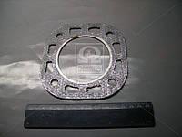 Прокладка головки блока ПД 10 (производство Беларусь) (арт. Д24.с18-А)