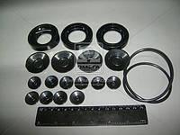 Рем комплект НШ-100А, 71А-3 ЭО2621, К-700, К-701 (Производство Украина) Р/К-108