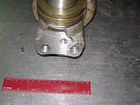 Цапфа поворотная МТЗ правая с втулкой (Производство БЗТДиА) 80-3001085-01