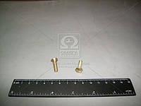 Винт М5х20 кожуха руля ВАЗ 2101-07 (Производство Белебей) 1/33112/01