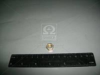 Гайка М8 хомута прием. трубы глуш., рычага передней подвевски КАМАЗ,ВАЗ (Производство Белебей) 1/61008/21