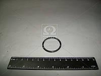 Кольцо ГОСТ 9833-73 (Производство МТЗ) 035-040-30-2-2