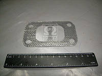 Прокладка переходника выпускного коллектора Д 260 (Производство ММЗ) 260-1008026
