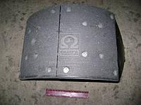 Колодка тормозной МАЗ 5440, КАМАЗ задней правая (Производство ТАиМ) 5440-3502090, AHHZX