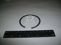 Кольцо 1Б-75 (производство МАЗ) (арт. 400468)