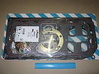 Прокладки (комплект) HEAD DAF 95 XF XF250/280/315/355 (производство Payen) (арт. DW472), AHHZX