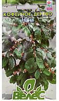 Кофейное аравийское дерево Нана 1г