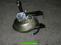Усилитель тормозной вакуум. ГАЗ с клапаном управления (Производство ГАЗ) 3309-3550010