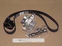 Комплект зубчатого ремня с водяной насосом (Производство ContiTech) CT939WP2