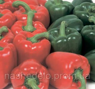 Семена перца сладкого Мазурка F1 500 семян Rijk Zwaan