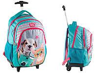 Рюкзак школьный на колесах с собакой и кошкой PASO