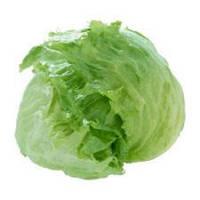 Салат головчатый