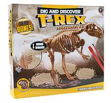 Археологические раскопки динозавров