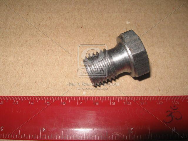 Пробка картера масляного 50-1401166 - АВТОТОРГ в Мелитополе
