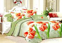 Двуспальный набор постельного белья 180*220 из Полиэстера №244 Черешенка™