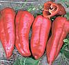 Семена перца сладкого Корина F1 500 семян Rijk Zwaan