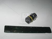 Датчик температурный охлаждающей жидкости (производство Vernet) (арт. WS2579), AAHZX