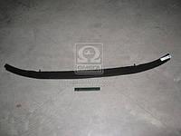 Шина бампера передний нижняя VW PASSAT B6 05- (Производство TEMPEST) 0510610941